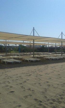 Felicia Village: plaj
