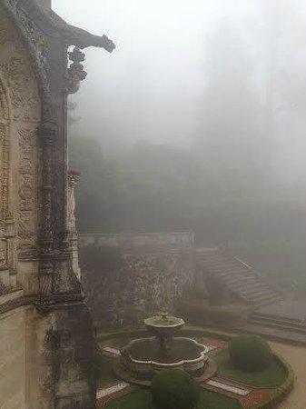 Bussaco Palace Hotel: туманное утро в Буссаку