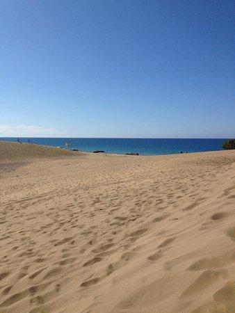 eó Suite Hotel Jardin Dorado: Beach