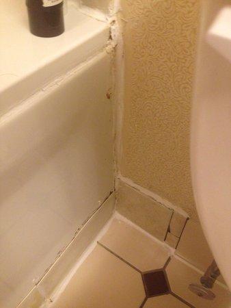 Holiday Inn Express Hershey (Harrisburg Area) : Bathroom tube.
