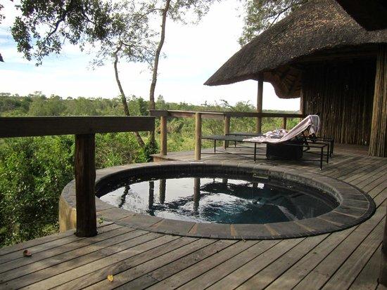 Londolozi Private Game Reserve: private pool