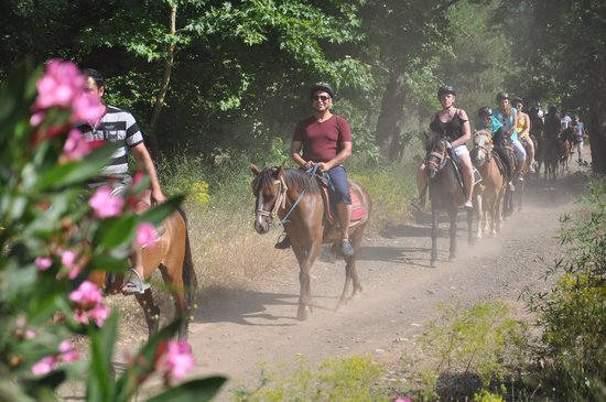 Pinar Horse Safari: horse trip