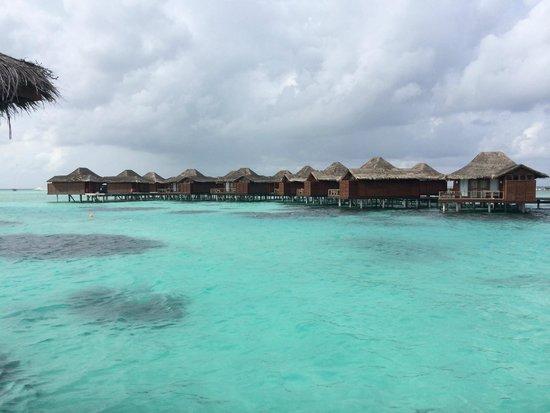 Anantara VeliMaldivesResort : Water is so clear