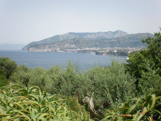 Villaggio Santa Fortunata Campogaio: vue de la terrasse du restaurant