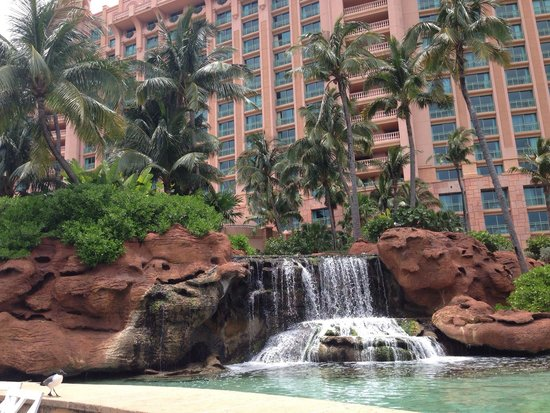 Atlantis, Royal Towers, Autograph Collection: Water feature with stingrays and baby sharks