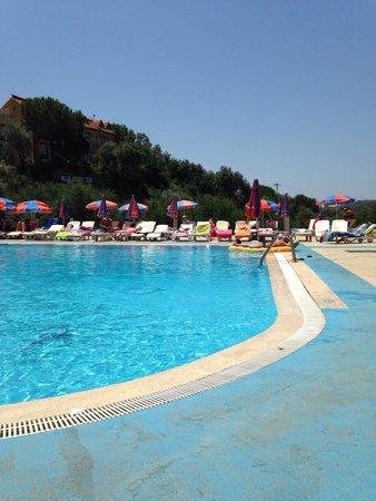Pink Palace: Pool very nice