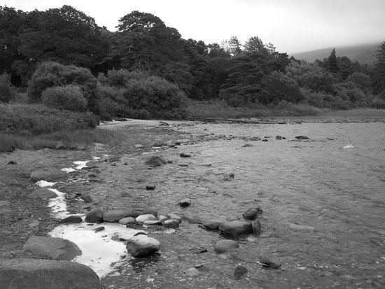 Parque Nacional de Killarney: parc national