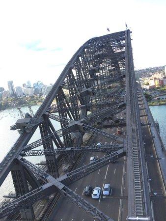 Pylon Lookout at Sydney Harbour Bridge: 上からみたハーバーブリッジ