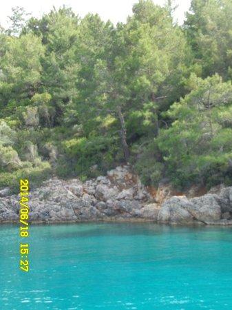 Cleopatra Island : good trip