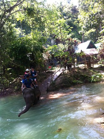 Tad Sae Waterfall : Elephant Ride down the lower falls
