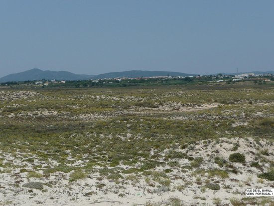 Praia do Barril : La vue, dos à la mer, de la dune ...