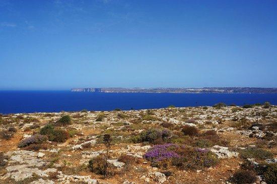 Karlito's Way: Gozo