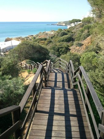 Aqua Pedra dos Bicos Design Beach Hotel : Weg zum Meer vom Hotel