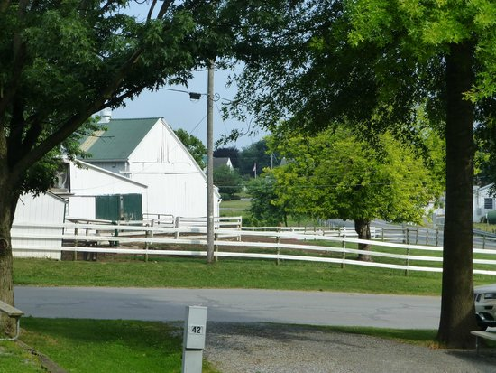 Beacon Hill Campground: Amish farm beside the campground