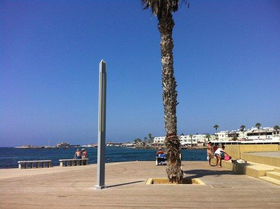 Pandream Hotel Apartments : пляжная зона и набережная в Пафосе