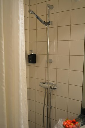 Elite Palace Hotel Stockholm: душ