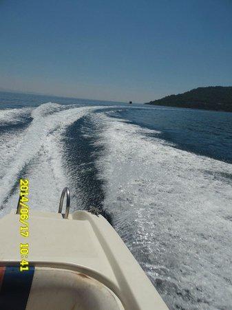 Mega Diana Boat Trip-Tours: Good trip