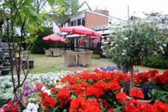 The Falcon Hotel: Garden