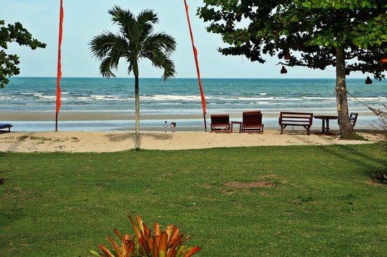 Viva Vacation Resort: beach