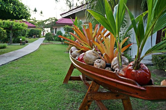 Viva Vacation Resort : garden