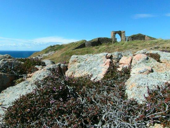 Grosnez Castle: Distant view
