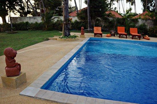 Viva Vacation Resort : pool