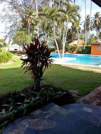 Viva Vacation Resort: pool