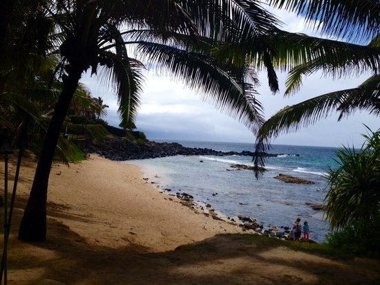 Grand Wailea - A Waldorf Astoria Resort: Another random beach to enjoy among many!!!