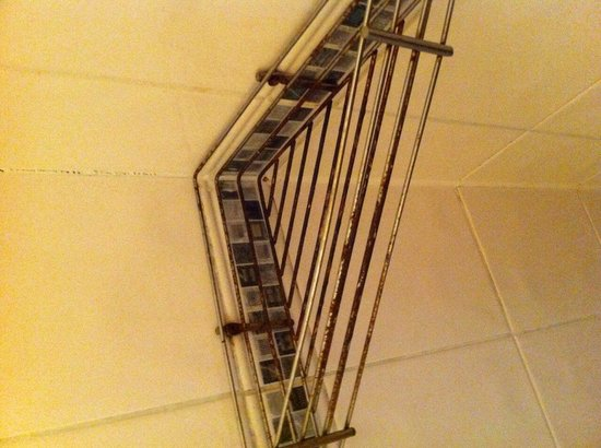 Oxford Hotel London: The most attractive shower holder!
