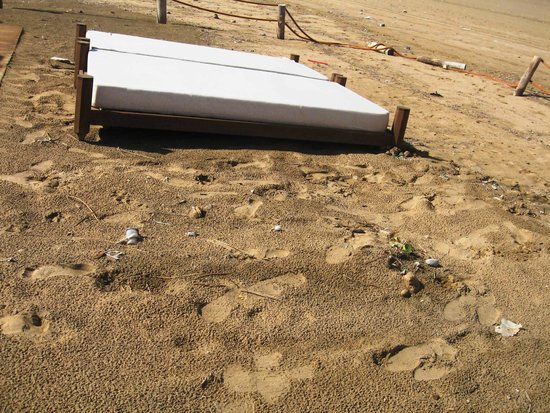 Sofitel Agadir Thalassa Sea & Spa : Verunreinigter Hotelstrand