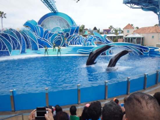 SeaWorld San Diego : The show!