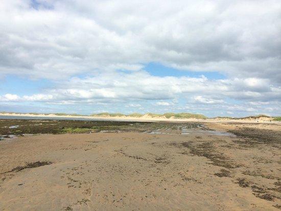 Trump International Golf Links & Hotel: Beach at Doonbeg