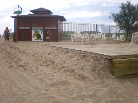 El Delfin Verde: beach bar (costruito dalle 5,15 di mattina fino alla sera nel giorno 14-06-2014)
