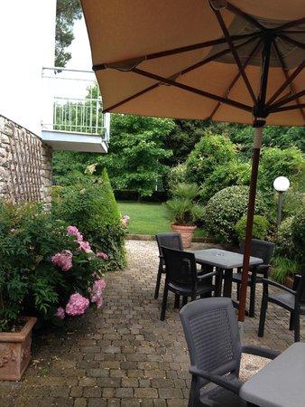 Hotel Riviera Blu : Garden