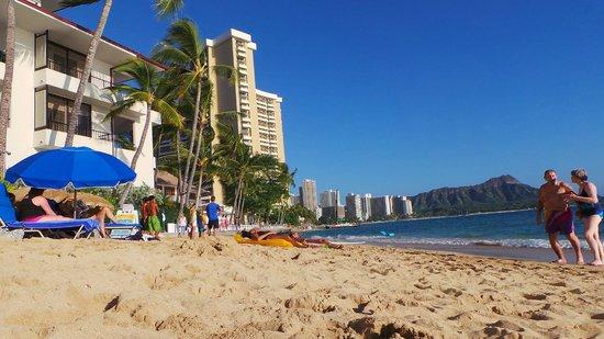 Outrigger Reef Waikiki Beach Resort: The beach from the resort