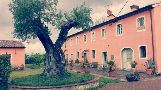 Casal Sant'elena: stupendo!