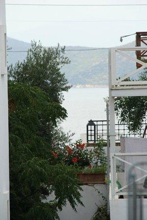 Emelce Aparts: Вид из окна