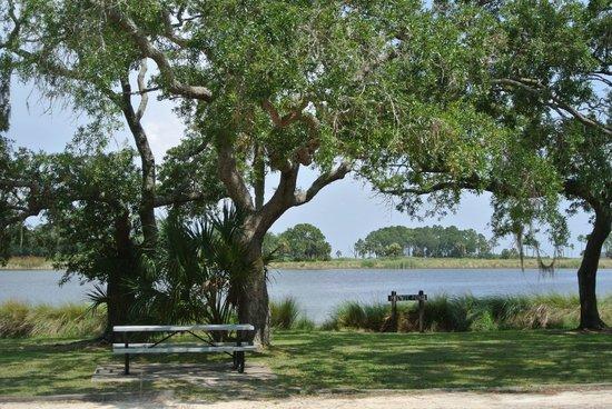 St. Marks Lighthouse: picnic area at St Marks Wildlife Refuge