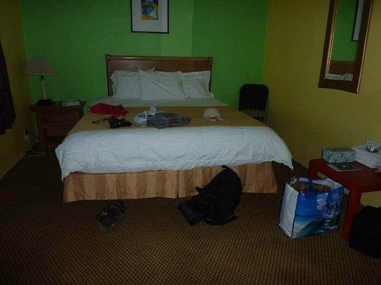 9 Palms Inn : Das Bett