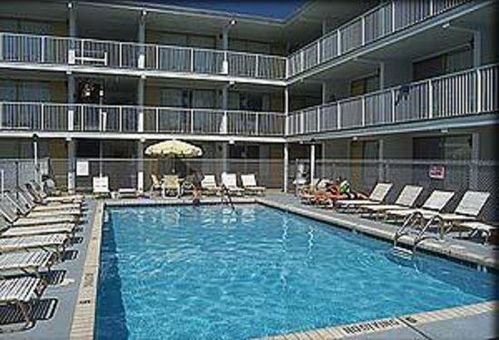 Empress Motel : Empress Pool