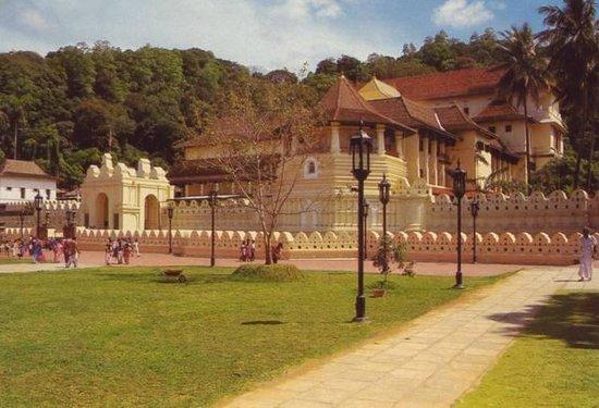 Lake Lodge Hotel: vue du temple de Kandy