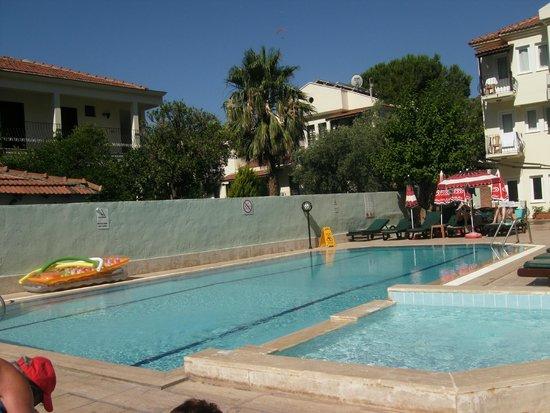 Lemon Tree Hotel : Pool