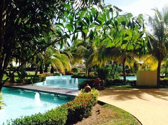 Iberostar Rose Hall Beach Hotel: the grounds