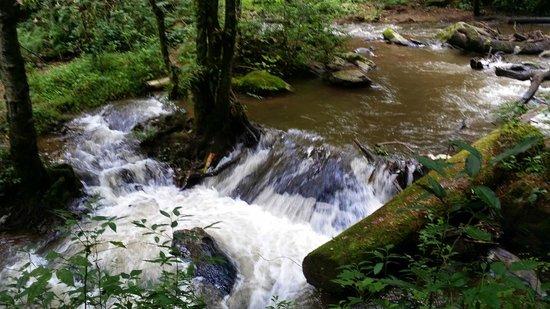 Mision Grand Valle de Bravo: Río de la cascada
