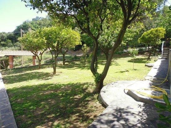 Villaggio Turistico La Valdana: giardino