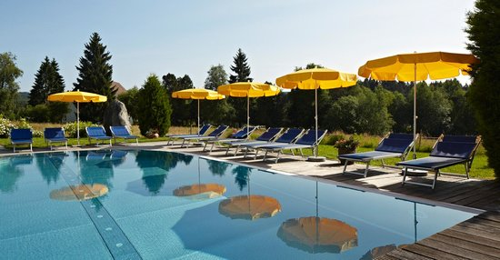 Hotel Reppert: Gartenbad im Sommer