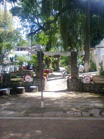 Paqueta Island Beach: Cemitério de passáros