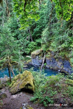 Stamp River Provincial Park : Stamp Falls provincial park