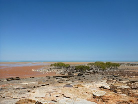 Broome Hovercraft: View over the dinosaur prints and across the bay