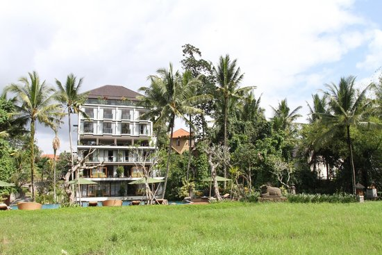 Plataran Ubud Hotel & Spa: View of hotel from the garden
